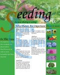 Seeding_1