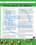 Seeding_3